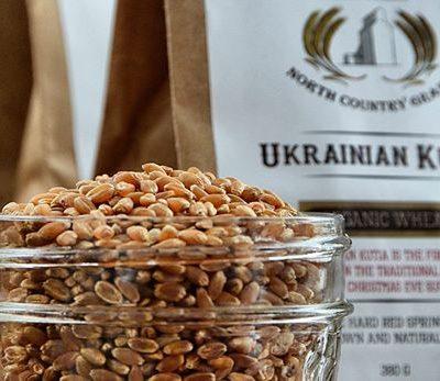 Ukrainian Kutia Wheat Berries – 380g
